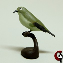 Oiseau-lunettes vert