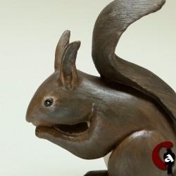 Ecureuil roux, phase sombre
