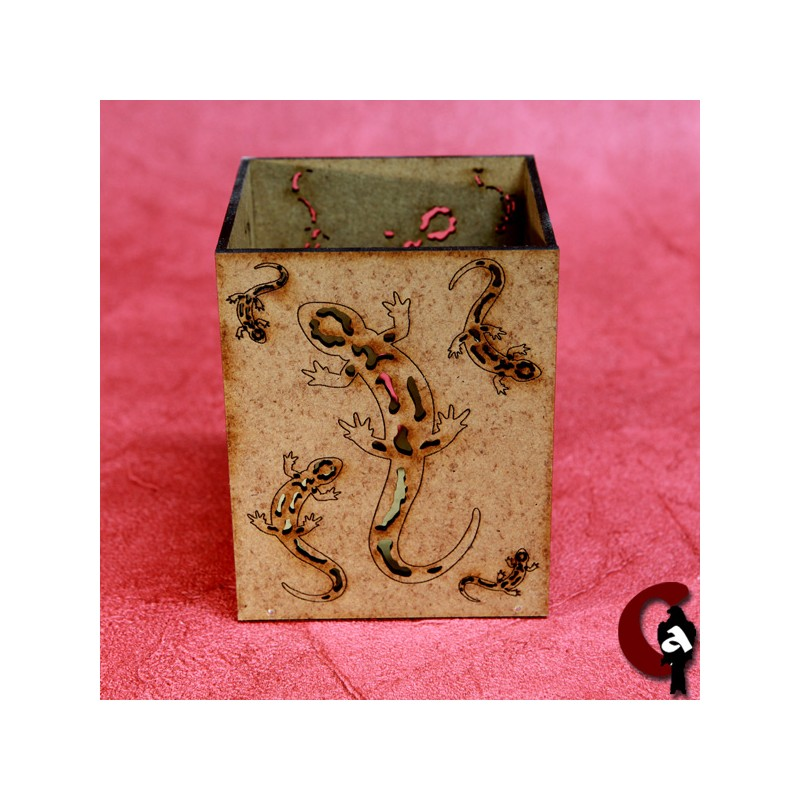 photophore salamandre