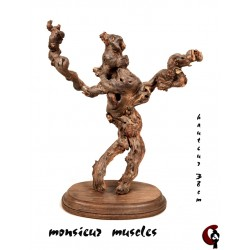 Monsieur muscles